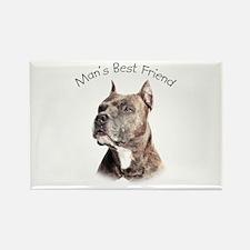 Man's Best Friend Rectangle Magnet (100 pack)