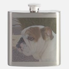 Penny's Paw Flask