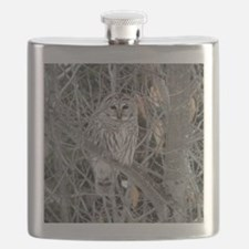 Barred Owl Flask