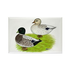 Snowy Call Ducks Rectangle Magnet (100 pack)