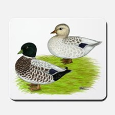 Snowy Call Ducks Mousepad