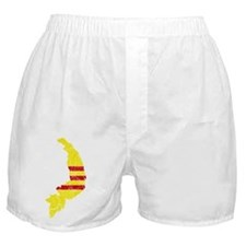 South Vietnam Flag And Map Boxer Shorts