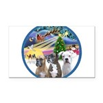 Xmas Magic / 3 Boxers Rectangle Car Magnet