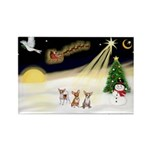 Night Flight/3 Chihuahuas Rectangle Magnet (10 pac