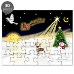 Night Flight/C Crested #9 Puzzle