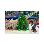 Xmas Magic & Collie Rectangle Magnet (10 pack)