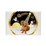 Night Flight/Dachshund #13 Rectangle Magnet