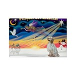 XmasSunrise/Eng Setter Rectangle Magnet (10 pack)