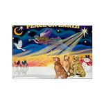XmasSunrise/3 Goldens Rectangle Magnet (10 pack)