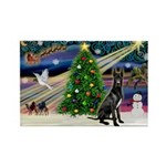XmasMagic/Black Dane Rectangle Magnet (10 pack)