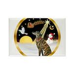Night Flight/Greyhound (brin) Rectangle Magnet (10