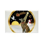 Night Flight/Greyhound (brin) Rectangle Magnet