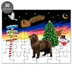XmasSigns/Newfie Puzzle