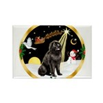Night Flight/Newfie #2 Rectangle Magnet (10 pack)