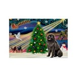 Xmas Magic/Newfie (#2) Rectangle Magnet (10 pack)