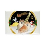 Night Flight/2 Pomeranians Rectangle Magnet (10 pa