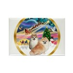 XmasMagic/2 Pomeranians Rectangle Magnet (10 pack)