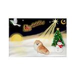 Night Flight/Pomeranian Rectangle Magnet (10 pack)