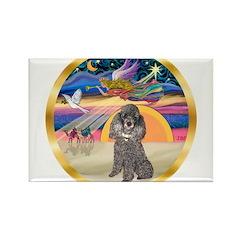 XmasStar/Silver Poodle #8 Rectangle Magnet