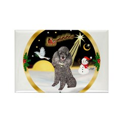 Night Flight/Silver Poodle Rectangle Magnet