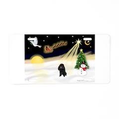 Night Flight/Poodle (min) Aluminum License Plate