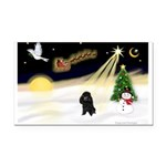Night Flight/Poodle (min) Rectangle Car Magnet