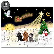 Night Flight/4 Poodles Puzzle