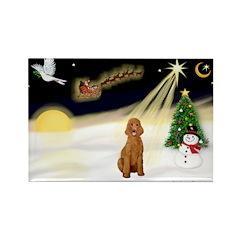 Night Flight/Apricot Poodle ( Rectangle Magnet (10