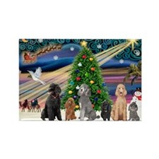 XmasMagic-6 Poodles Rectangle Magnet