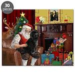 Santa's PWD Puzzle