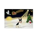 Night Flight/Rat Terrier Rectangle Magnet