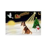 Night Flight/Sheltie Rectangle Magnet (10 pack)