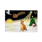 Night Flight/Shiba Inu Rectangle Magnet (10 pack)