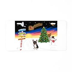 XmasSigns/Corgi Pup (Z) Aluminum License Plate