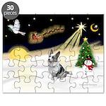 Night Flight/Corgi (BM) Puzzle