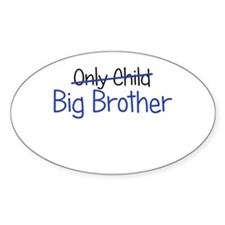 Big Brother Funny Decal