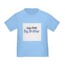 Big Brother Funny T