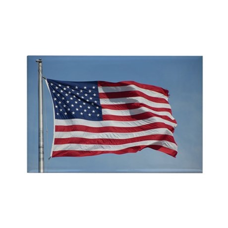 usa american flag Rectangle Magnet (100 pack)