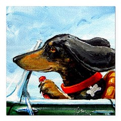 Dachshund Takes the Wheel Square Car Magnet 3