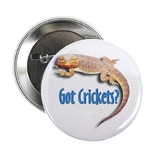 Bearded Dragon 2 Got Crickets Button