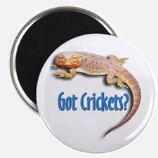 Bearded Dragon 2 Got Crickets Magnet