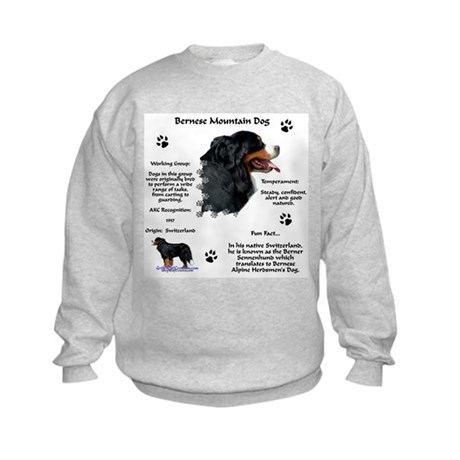 Berner 1 Kids Sweatshirt