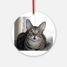 Savanna Cat Portrait Ornament (Round)