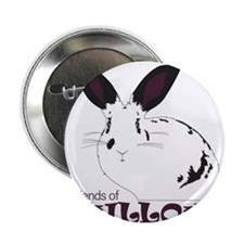"Friends of Willow 2.25"" Button"