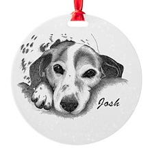 JANINE -JOSH d.jpg Ornament