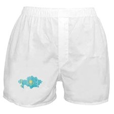 Kazakhstan Flag And Map Boxer Shorts
