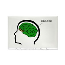 Funny Snakes on a plane Rectangle Magnet