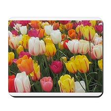 Colorful Tulip Mousepad