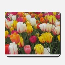 Colorful Tulip Mousepad