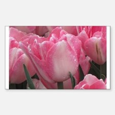 Pink Tulip Decal